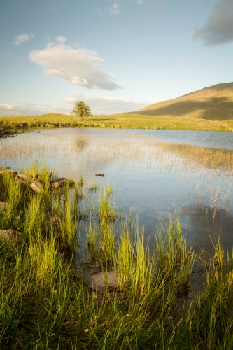 Solstice sunset at Tewet Tarn by Carmen Norman