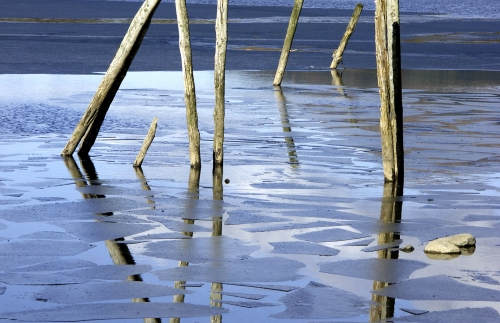 Those Poles on Ice by Heleen Franken-Gill