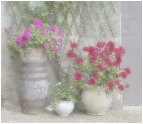 Tuscan Flowerpots by Tricia Rayment
