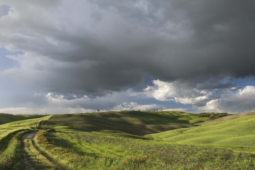 Gathering Storm Tuscany by Carol Minks