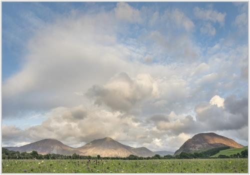 Clouds, fells and wild flowers